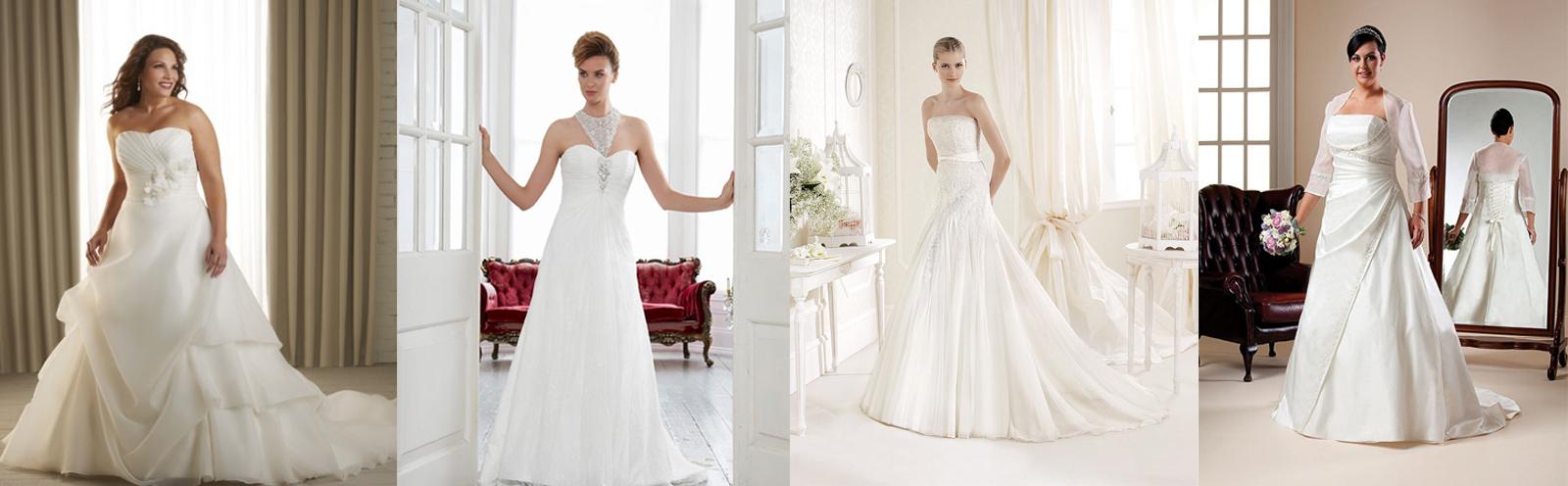 Amore Plus Bridal Wear